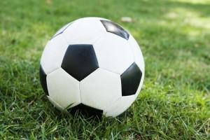 Soccer coaches named to lead SPHS programs